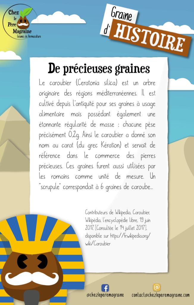 GrainedHistoire2 - De précieuses graines caroubier