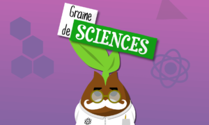 Header Graine de Sciences