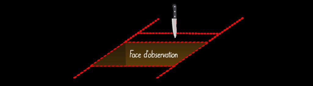 MP4 Objet7 Évaluer le type de fonctionnement de son sol