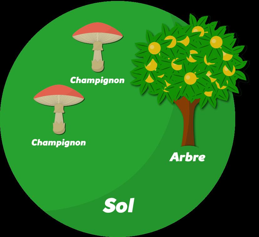 Concevoir un site en permaculture Objet2