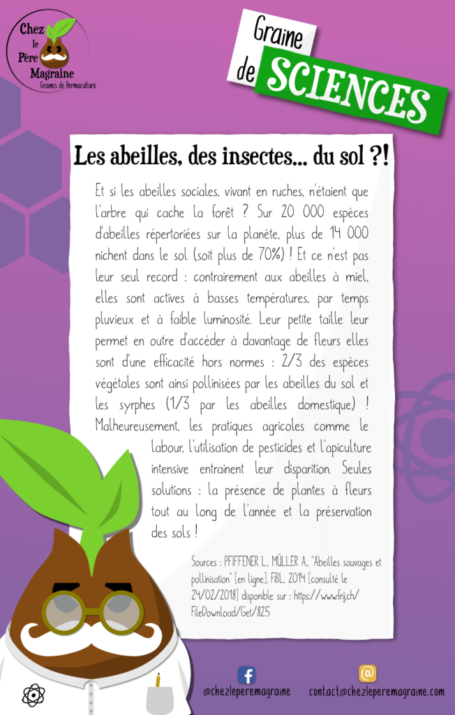 Graine de Sciences 12 abeilles du sol