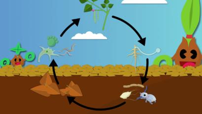 Header Fertilité naturelle des sols