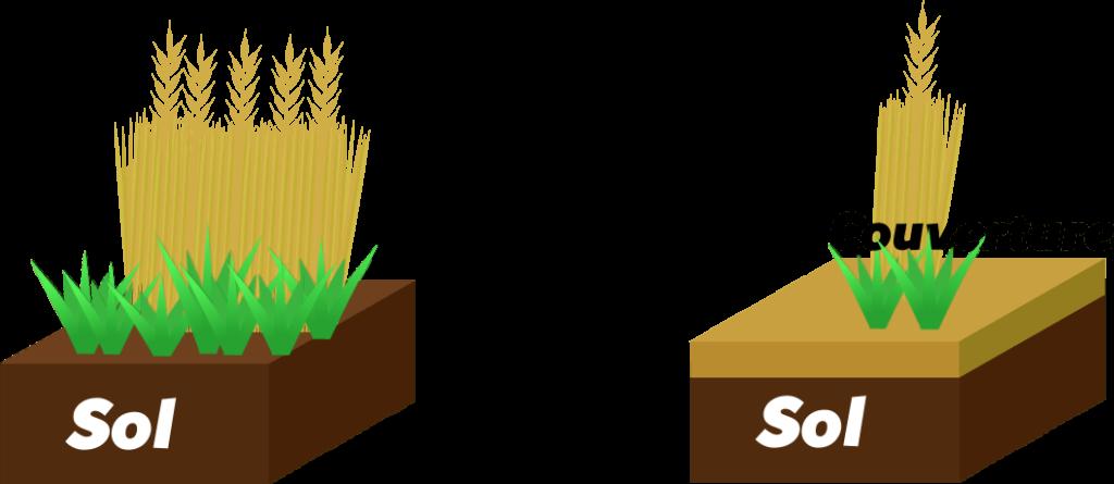 Couvertures du sol Objet2