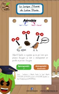 LexiqueIllustré Aérobie