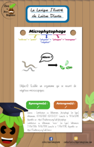 Lexique Illustré Microphytophage