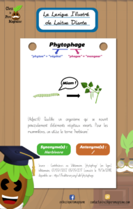 Lexique Illustré Phytophage