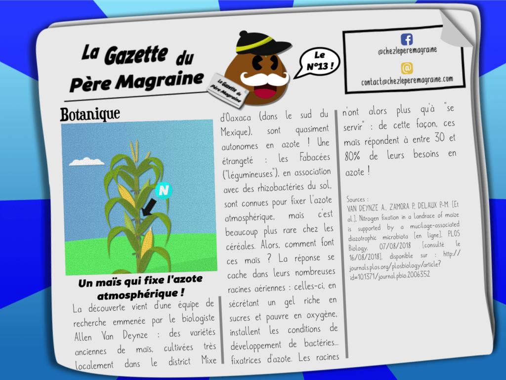 Gazette Père Magraine n°13 - Un maïs fixateur d'azote