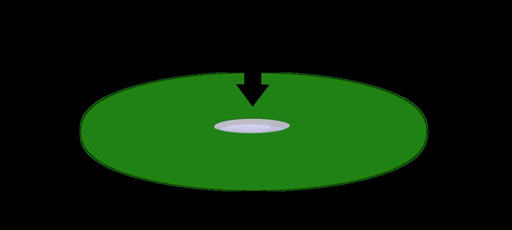 Analyser la macrofaune rampante de son sol Objet10