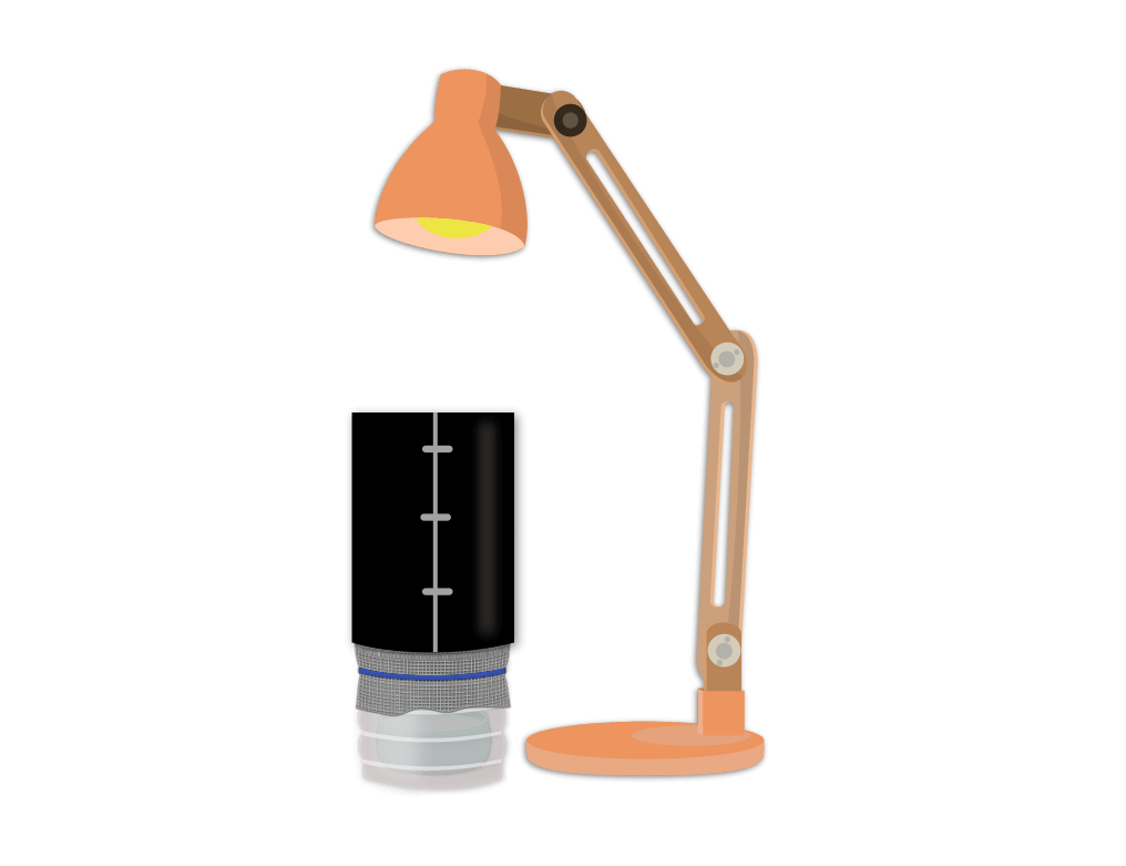 Analyser la microfaune de son sol Objet8