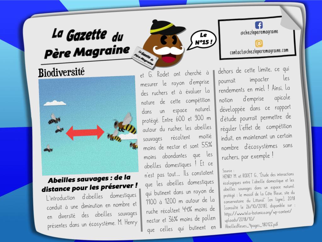Gazette Père Magraine n°15 - Abeilles sauvages _ tenir la distance pour les préserver