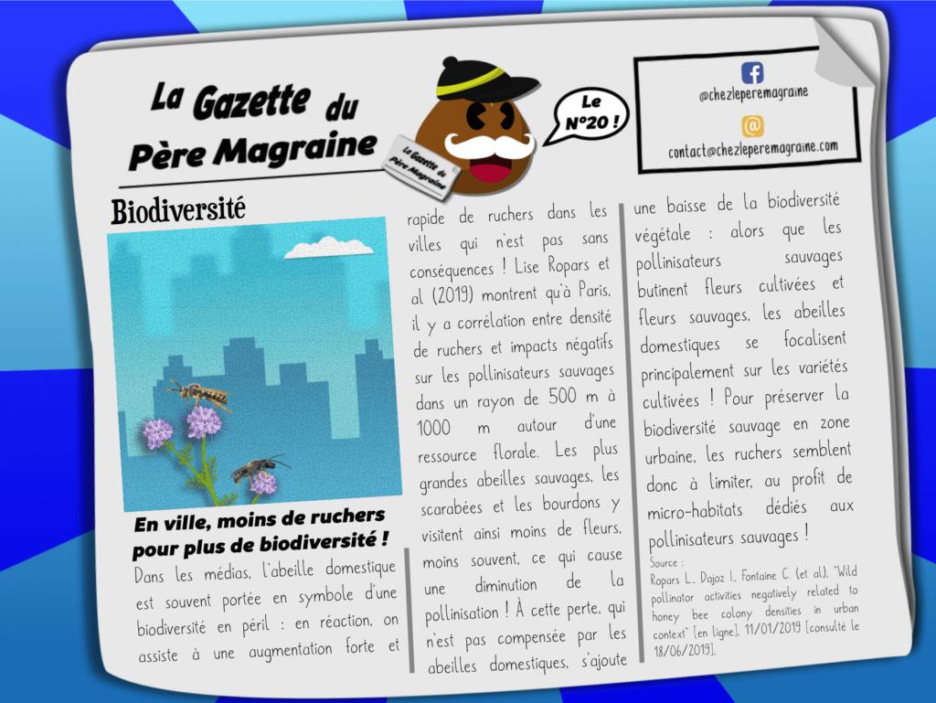 Gazette Père Magraine n°20 - En ville, moins de ruchers, biodiversité
