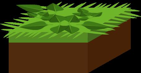 Engrais verts Objet7